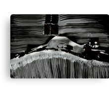0023 - BrushAndInk - Behind and Within Canvas Print