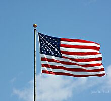 Beautiful Flag by June Holbrook