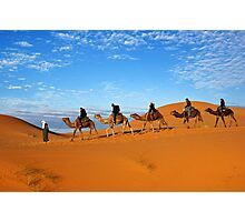 5 Camels Photographic Print