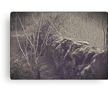 The Old Wall of Burford Canvas Print