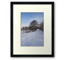 A Pale Blue Snowday  Framed Print