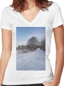 A Pale Blue Snowday  Women's Fitted V-Neck T-Shirt