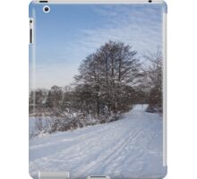 A Pale Blue Snowday  iPad Case/Skin