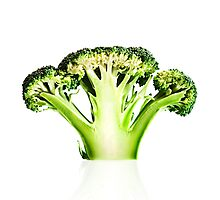 Broccoli cutaway on white Photographic Print