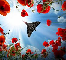 Vulcan Overhead by J Biggadike