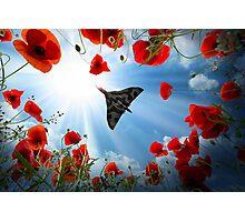 Vulcan Overhead Photographic Print