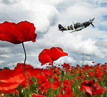 Spitfire Over The Poppy by J Biggadike