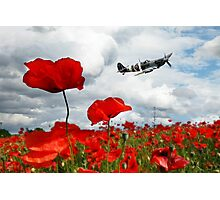 Spitfire Over The Poppy Photographic Print
