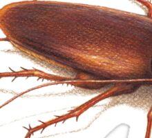 Roach Sticker
