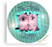 Best Friends Forever Kittens Canvas Print