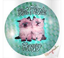 Best Friends Forever Kittens Poster