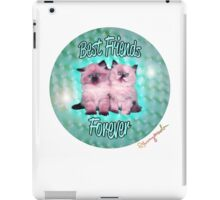 Best Friends Forever Kittens iPad Case/Skin