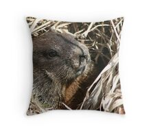 In my sights Throw Pillow