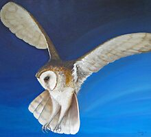 """Coming Home"" - Barn Owl (Tyto alba) by wendywetherbee"