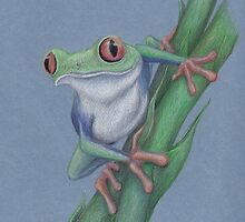 Red-Eyed Tree Frog by Lars Furtwaengler