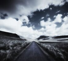 The Long Way by pther