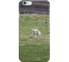 Lambs iPhone Case/Skin