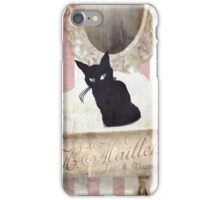 Bad Cat II iPhone Case/Skin
