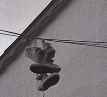 Sneakers on a Wire Sticker