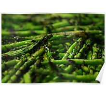 Grilled Asparagus w/ Balsamic Glaze Poster