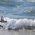 Birds on the beach St Helens Tas by CraftyThings