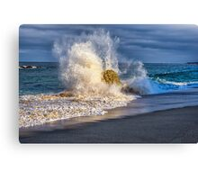 NATURE'S POWER Canvas Print