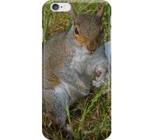 Abuse from a squirrel iPhone Case/Skin