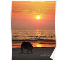 Sunset Play Poster