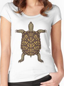 Terrapena Ornata Ornata Women's Fitted Scoop T-Shirt