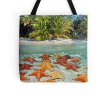Beach with palm trees and starfish underwater Tote Bag