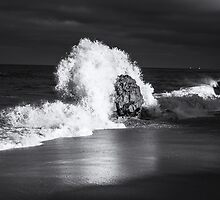 IMPACT IN MONOCHROME by joseph s  giacalone