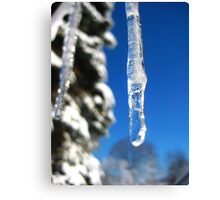 Icicles and Blue Skies Canvas Print
