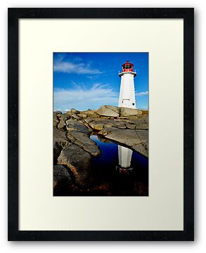 On Watch - Nova Scotia by Barbara Burkhardt