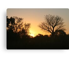 Sunset, El-Questro Wilderness Park, Kimberley Canvas Print