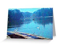 Morning Swans, Cologne Greeting Card