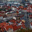View from the castle at Ljubljana, Slovenia by vadim19