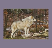 Solitary Timber Wolf Kids Clothes