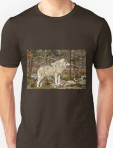 Solitary Timber Wolf T-Shirt