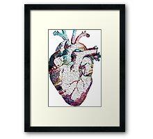 Anatomy - Heart (Oil Paint) Framed Print