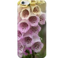Common Foxclove Flowers iPhone Case/Skin