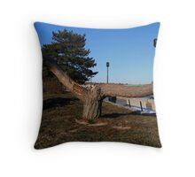 The Javlin Thrower Throw Pillow
