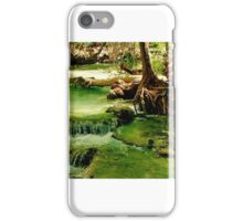 Havasu Creek on the Havasupai Indian Reservation iPhone Case/Skin