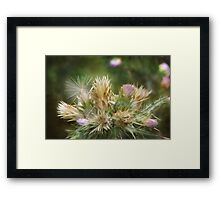 Weeds and Wildflowers 1 Framed Print