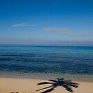 Paradise by Explorations Africa Dan MacKenzie