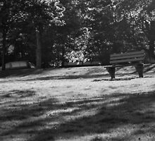Park Bench Tuesday Morning by coffeenoir