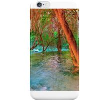 Havasu Creek  iPhone Case/Skin