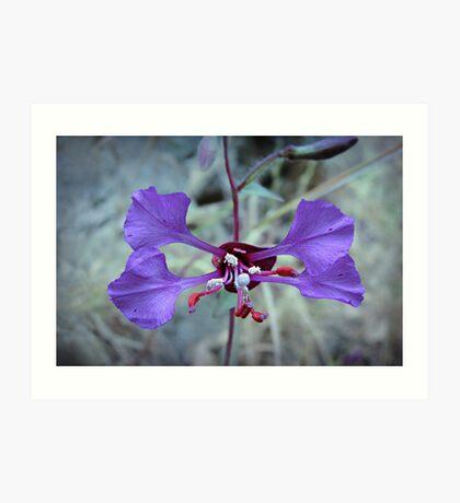 Weeds and Wildflowers  4 Art Print