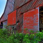 Hargrove's  Barn by WildestArt