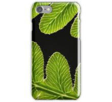 Macro photo of a bracken fern leaf  iPhone Case/Skin