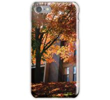 Filtered Colors iPhone Case/Skin